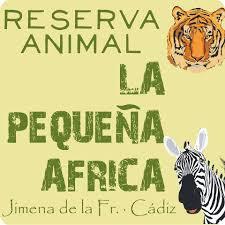 logo la pequeña africa